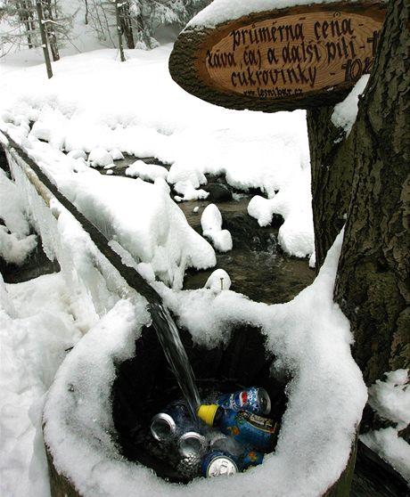 Lesní bar v Rychlebských horách