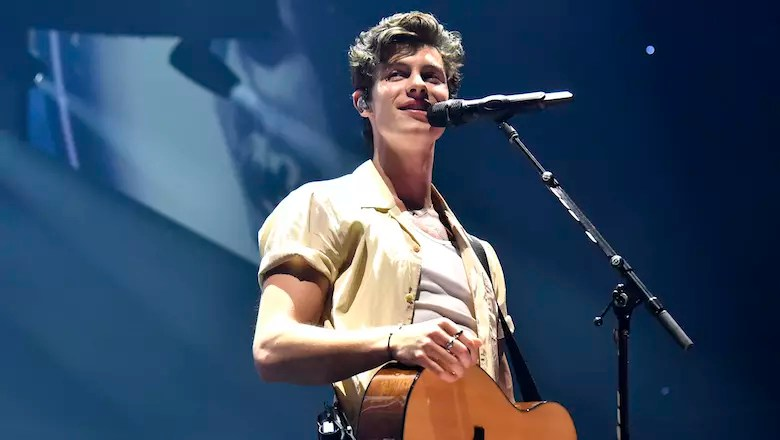 shawn mendes gushes over
