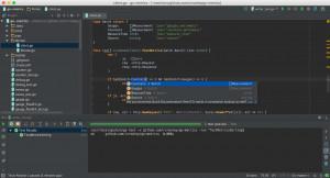 JetBrains GoLand náhled pro download