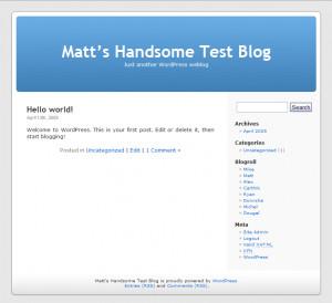 WordPress náhled pro download