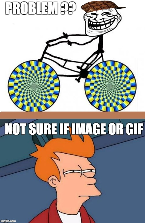 Not Sure If Gif : Imgflip