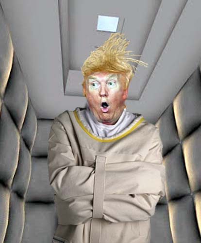 Goofy photoshopped image of Donald Trump wearing a straight jacket in a padded room.
