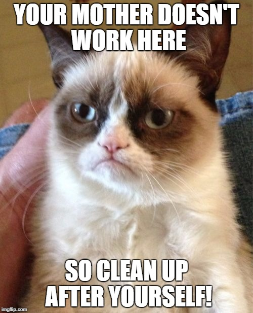 Clean Up After Yourself Meme : clean, after, yourself, Grumpy, Imgflip
