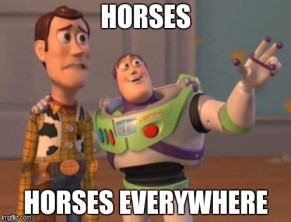 Escala Cluj - Horses, horses everywhere meme
