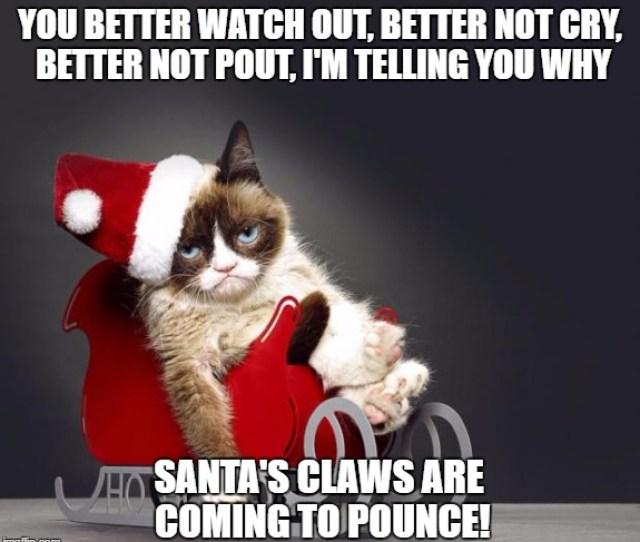 Grumpy Cat Christmas Hd