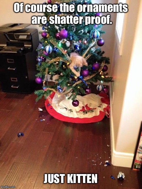 Image Tagged In Memes Funny Christmas Christmas Tree Cats Imgflip