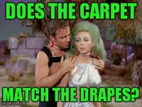 does the carpet match the drapes meme carpet imgflip