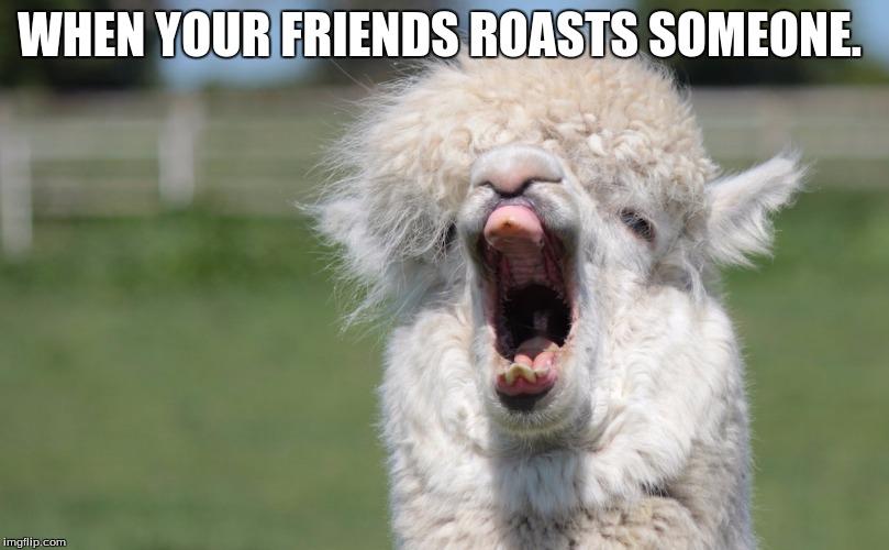 Friend Request Funny Facebook Memes
