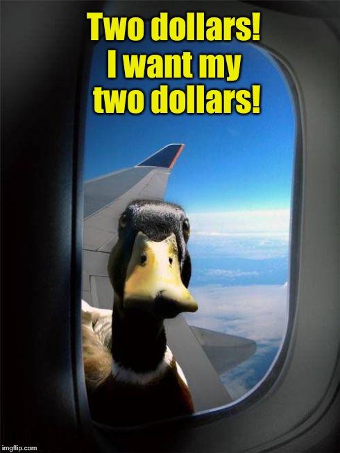 I Want My Two Dollars Meme : dollars, Better, Imgflip