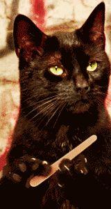 Black Cat Filing Nails : black, filing, nails, Filing, Nails, Image, NailsTip