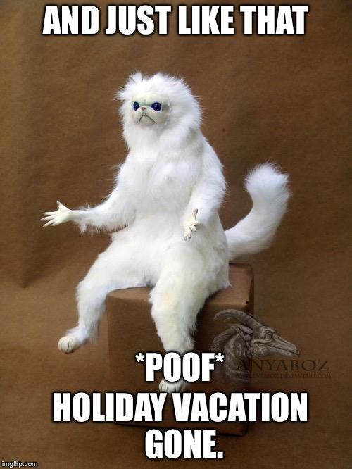 Holiday Meme : holiday, Holiday, Memes, Vizion, Interactive