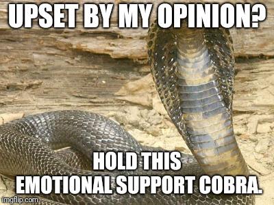 politics king cobra Memes & GIFs - Imgflip