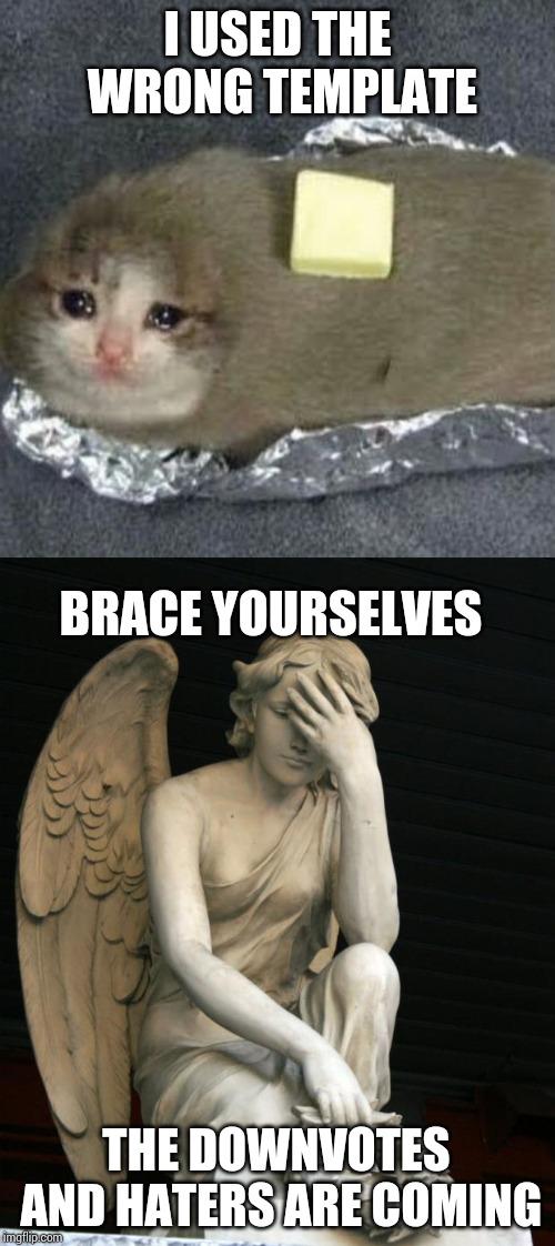 Potato Cat Meme : potato, MEMES_OVERLOAD, Potato, Memes, Imgflip