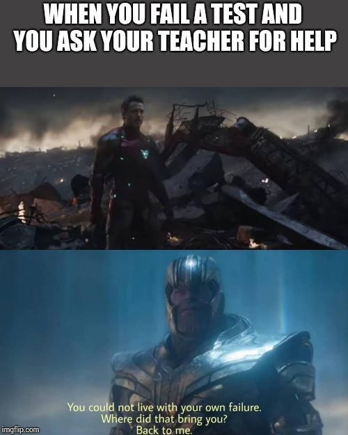 You Couldn T Live With Your Own Failure Meme : couldn, failure, Superheroes, Thanos, Could, Failure, Memes, Imgflip