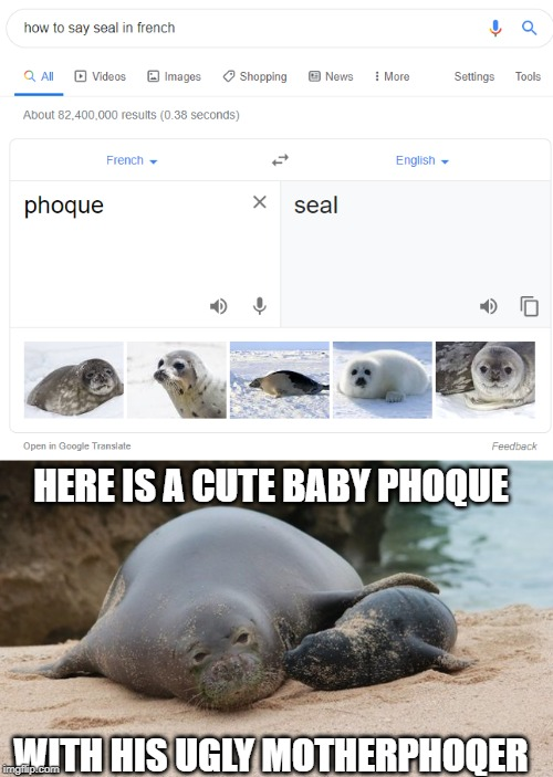 How To Say Seal In French Phoque : french, phoque, Phoque, Pronounced,