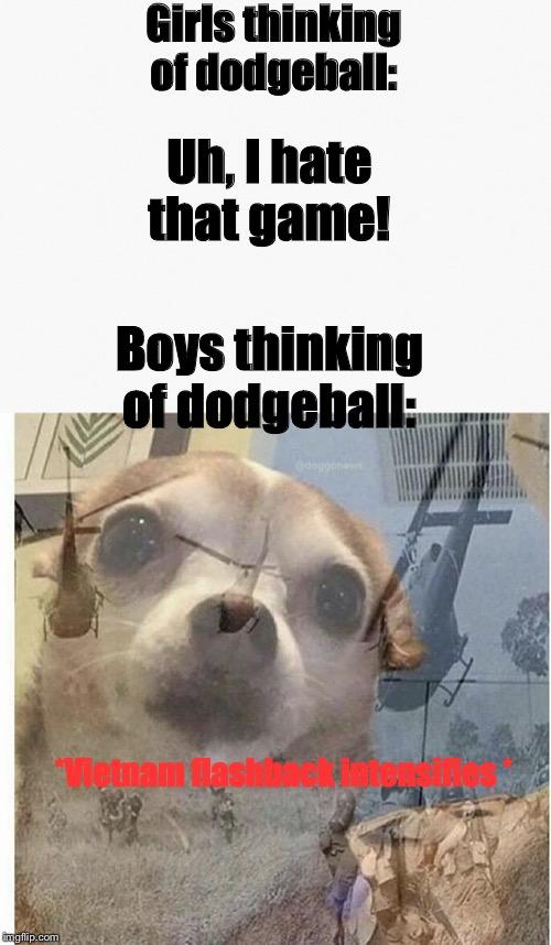 Dog War Flashback : flashback, Funny, Memes, Imgflip