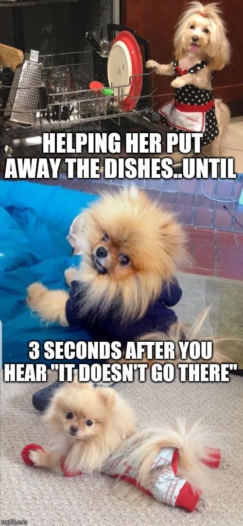 Dirty Dishes Meme : dirty, dishes, Dirty, Dishes, Memes, Imgflip