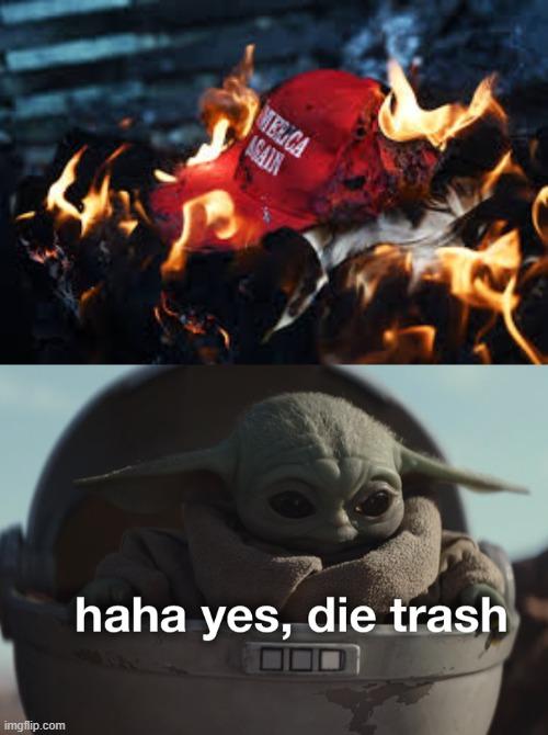Baby Yoda Die Trash : trash, PoliticsTOO, Trash, Memes, Imgflip