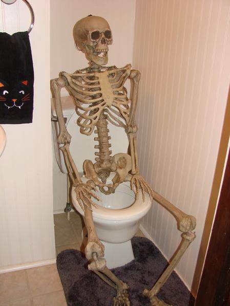 skeleton Meme Templates  Imgflip