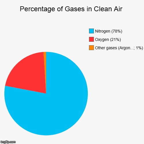 percentage of gases in