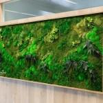 Slack Ebay Amazon Installing Plant Walls To Attract Millennials Business Insider