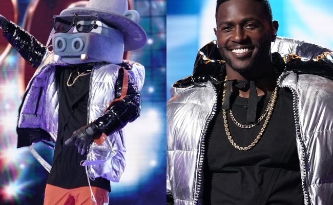 Every Celebrity Who S Been Revealed On The Masked Singer