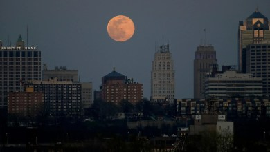 'Pink Moon' in April Is First Supermoon of 2021: How to Watch