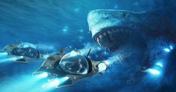 Znalezione obrazy dla zapytania rekin na sterydach zdjecia
