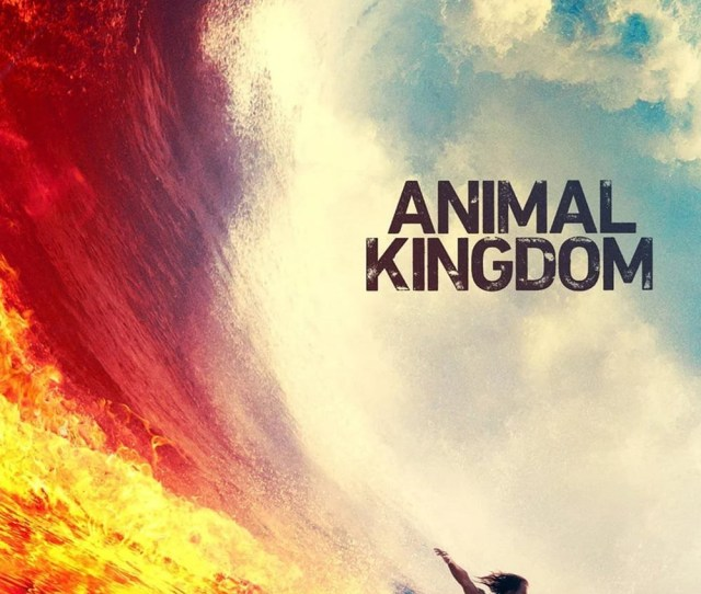 Subscene Animal Kingdom Us Fourth Season English Hearing Impaired Subtitle