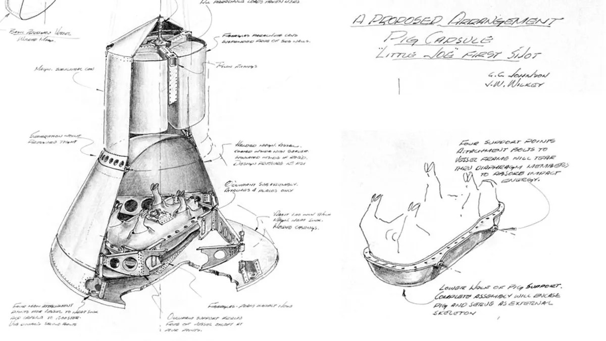 Someone Actually Made Plans to Send Pigs to Space