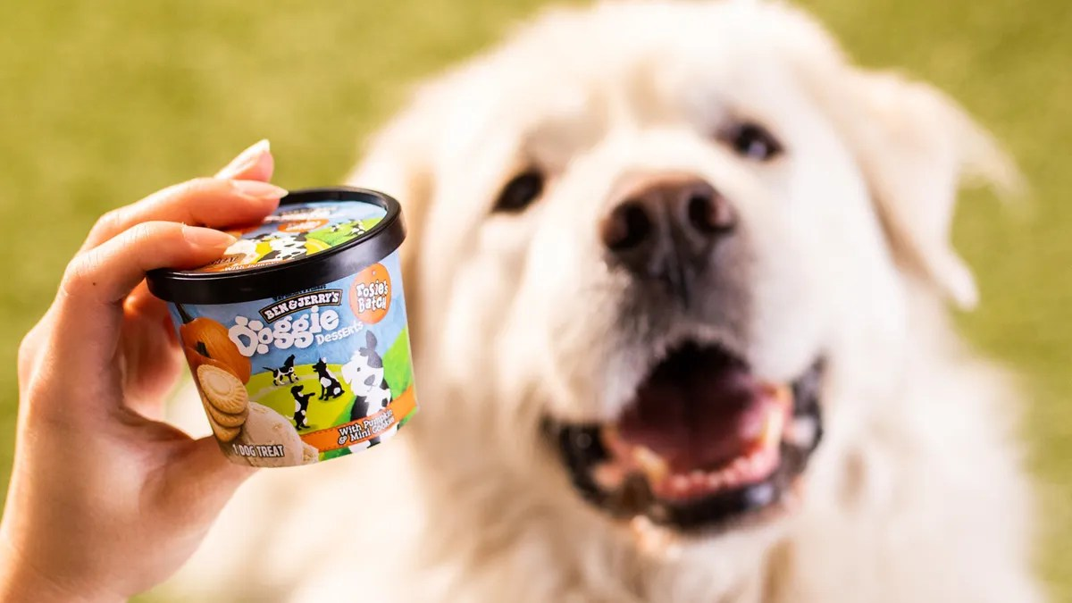 Ben & Jerry's debut Doggie Desserts ice cream for pets