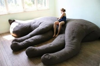 the kitty couch a