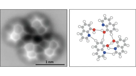 The Very First Image of a Hydrogen Bond