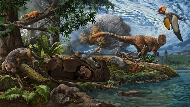 neljmyaqr5il0tmspfp3 These Mole-Like Critters Lived Under the Feet of Dinosaurs | Gizmodo