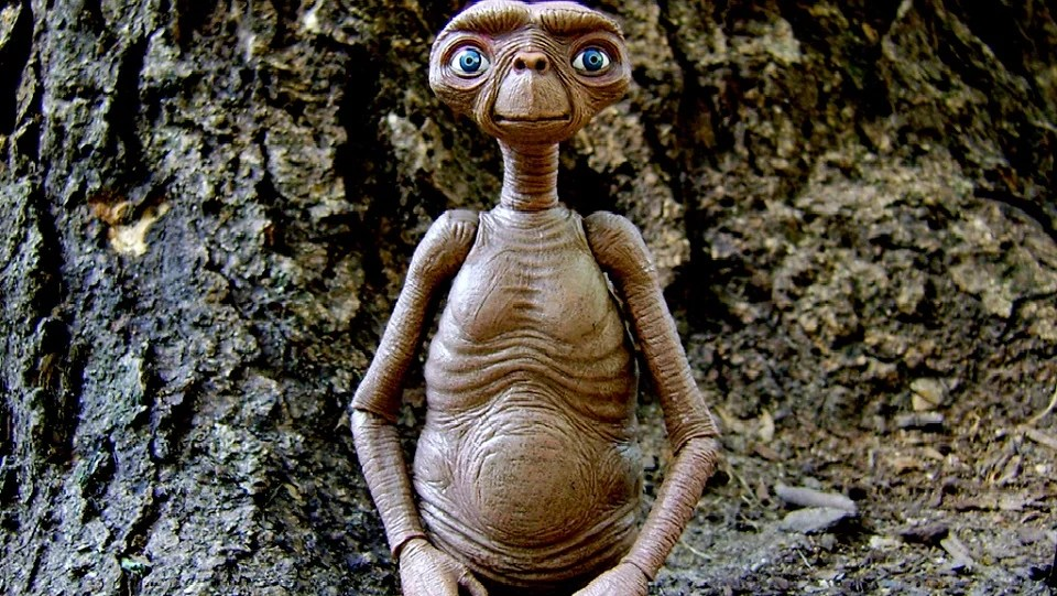 Weird Facts That You Didnt Know About ET The Extra