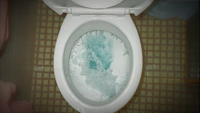 How to Unclog a Toilet When You Dont Have a Plunger