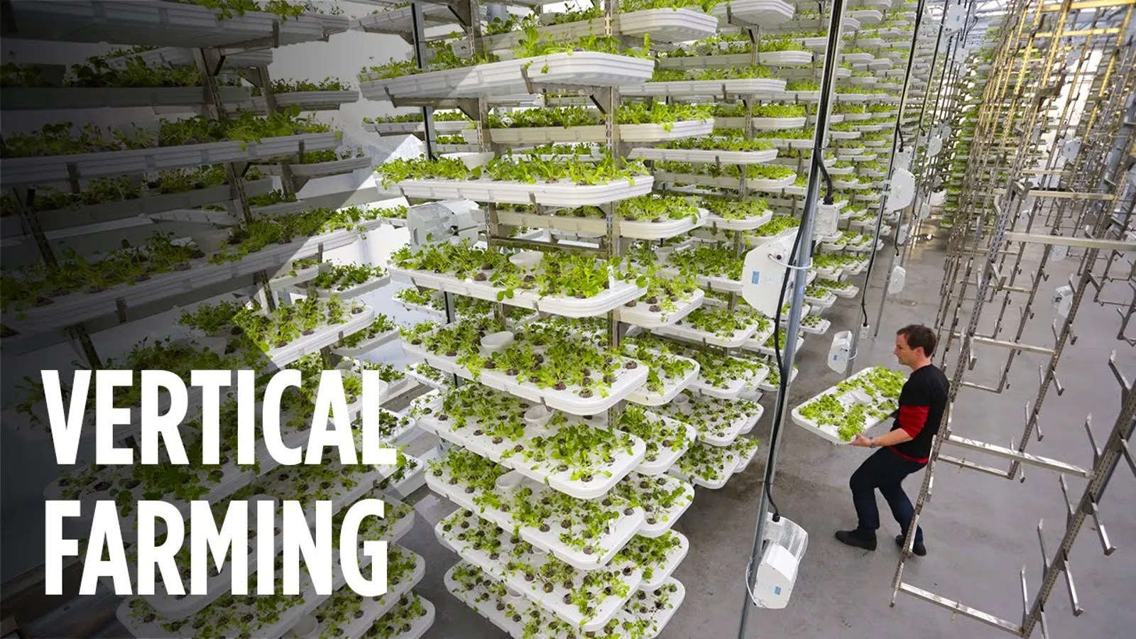 The Worlds Largest Vertical Farm Is Being Built In New Jersey