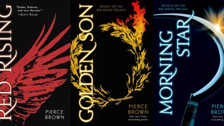 Image result for pierce brown books