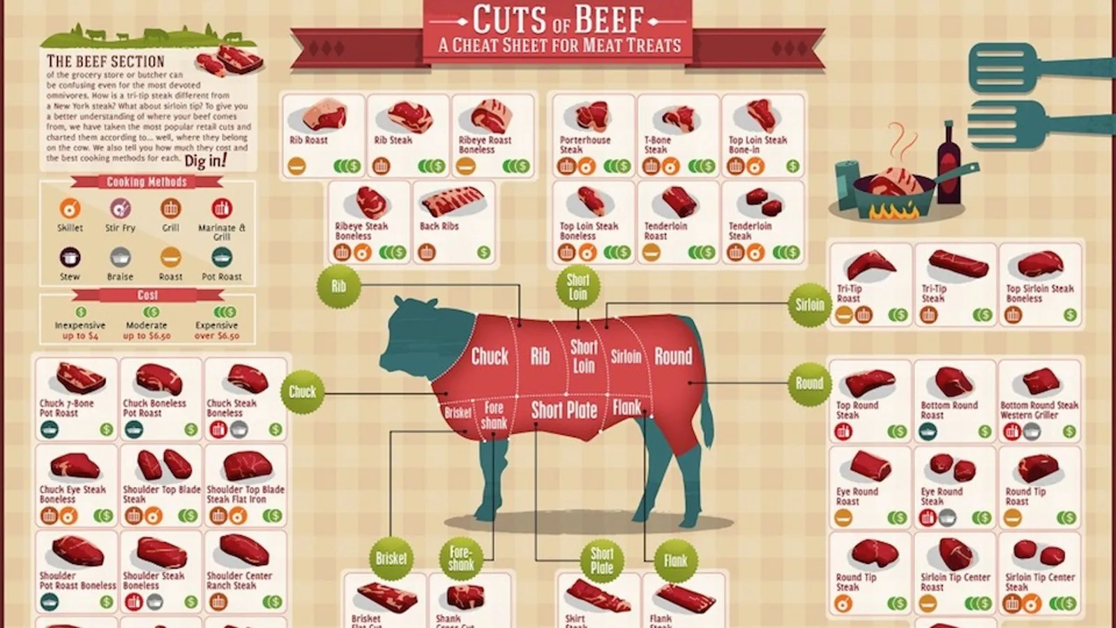 hight resolution of labelled diagram of beef cattle