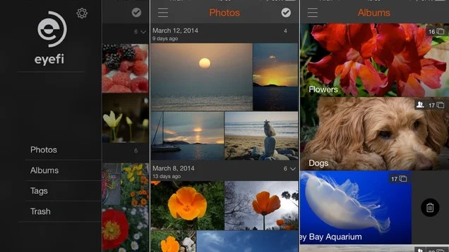 ​Eyefi Cloud Syncs Photos From Your Camera to the Internet in a Flash