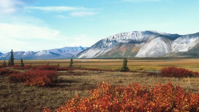 jdhtrwafpb7etj5mdvlq Every Major Bank Has Now Ruled Out Funding Arctic Drilling | Gizmodo