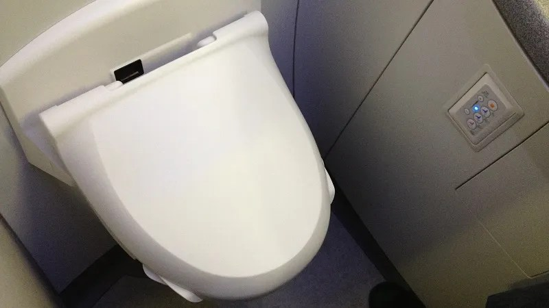 The Best Time to Poop on a Plane According to a Flight