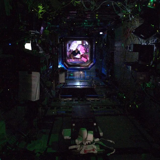 The Space Station at Night is Totally Creepy