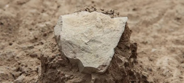 The World's Oldest Stone Tools Were Not Made By Humans
