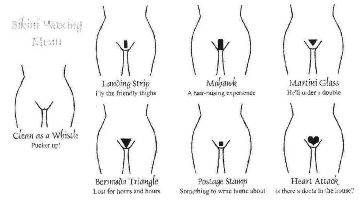 hight resolution of pubi diagram