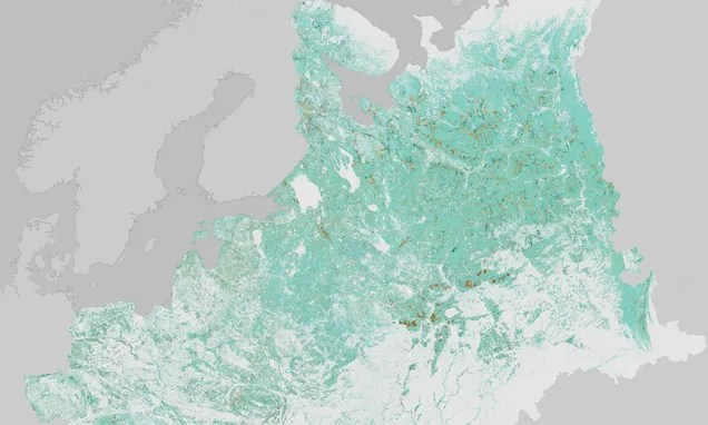 Central European Forests Are Regrowing After the Breakup of the USSR