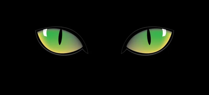 cat eyes and other