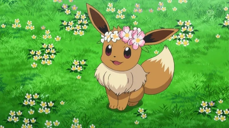 One Mans Quest To Redeem Eevee In Competitive Pokmon