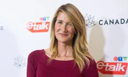 Laura Dern says her Star Wars: The Final Jedi character is supposed to be divisive