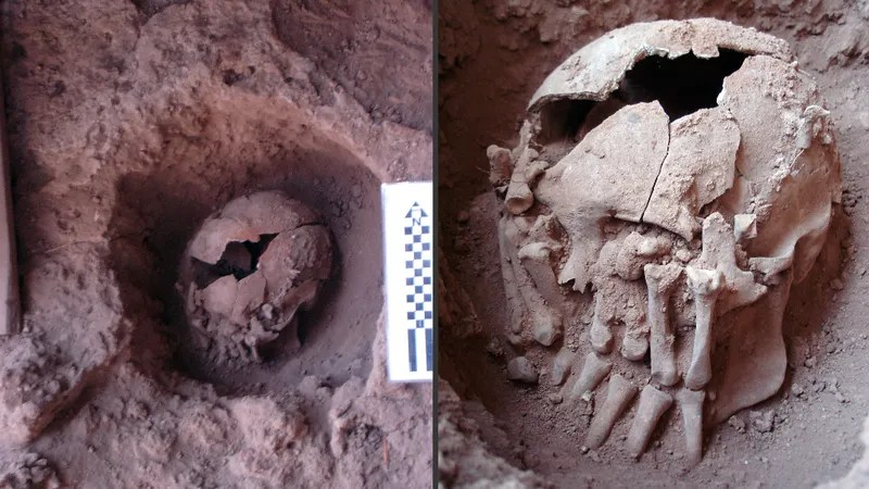 This Is the Oldest Case of Ritual Decapitation Ever Uncovered in the Americas